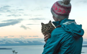 10 fanatical places for the cat lovers